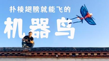 让娃尖叫的机器鸟,扑棱翅膀自己就能飞