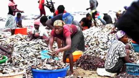"""非洲人饿着也不吃的""""东西"""",在中国却成为奢侈品?"""