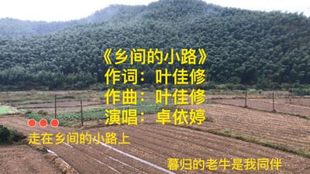 卓依婷——《乡间的小路》