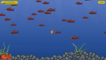 美味星球:一款大鱼吃小鱼的游戏变成了拼手速了吗