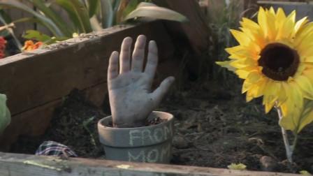 小女孩捡到一只假手,种在土里一浇水,长出了小男孩
