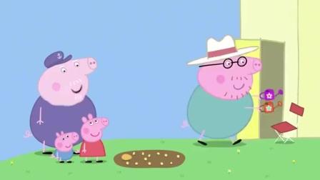 小猪佩奇:猪爸爸去倒茶的功夫,自己放椅子的地方,就变成了花园!