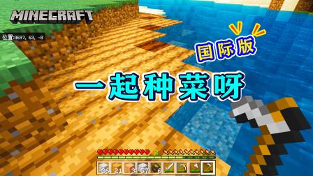 我的世界1.16版联机02:食物紧缺,赶紧挖一片耕地,种点麦子!