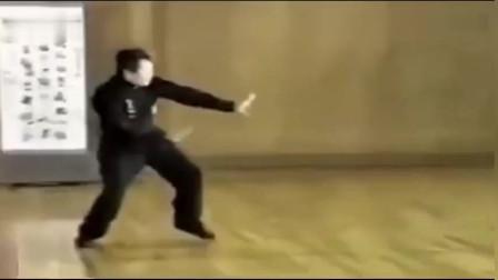 李书文老师现场演传统武术八极拳六大开慢动作教学!