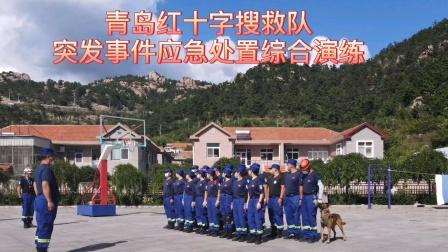青岛红十字搜救队突发事件应急处置综合演练