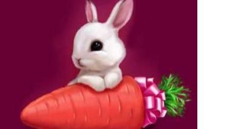 小白兔找食物 小白兔差点被虎吃了 兔兔历险记