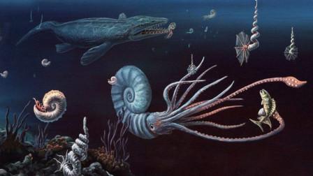 最新研究指出,第六次物种大灭绝正在进行,陆生脊椎动物处境危险