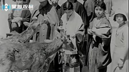 实拍,20世纪30年代的日本贵族女人们的生活