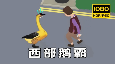 鹅作剧:超级无敌破坏鹅,恶搞大妈老大爷!