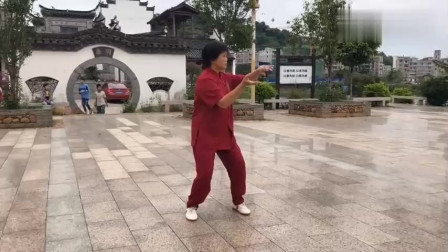 武术女老师公园晨练健身太极拳慢动作教学!