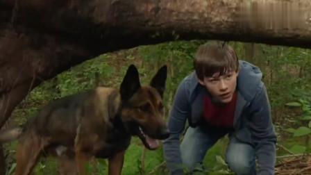 狗狗保护主人,以一敌二不落下风,一部感人的忠犬电影