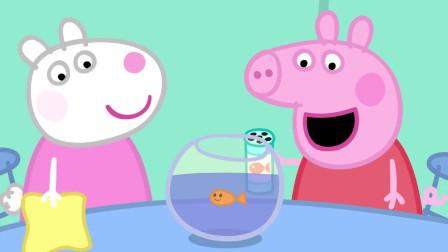 小猪佩奇:仓鼠兽医来评选最好的宠物,却选择自己的宠物,不公平