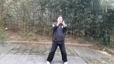 民间武术大叔现场演练传统武术咏春拳!
