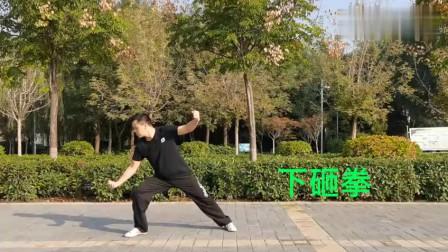 王西安老师现场演练四十八式太极拳散手教学!