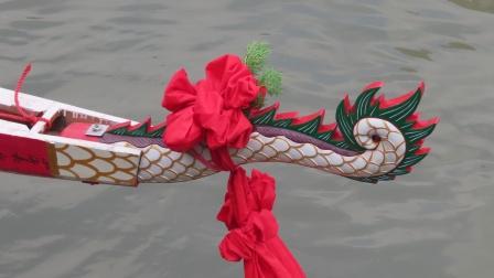 2020天河車陂雙社白尾雕新龍船返村 - 白尾雕 白尾