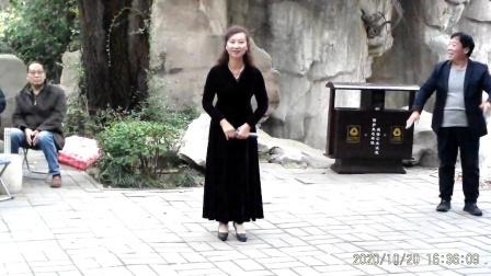 豫剧唱段(久离边庭战马狂)洛阳牛变玲演唱