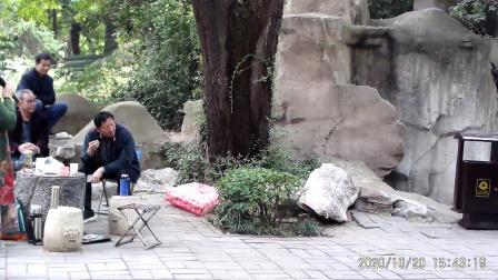 豫剧《桃花庵》选段 洛阳肖劲荣老师演唱