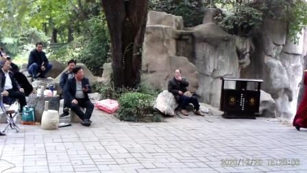 豫剧唱段(西门外放罢了三声炮)洛阳李海红老师演唱
