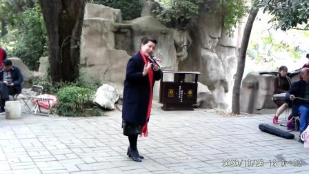 豫剧唱段(恼恨爹爹心不正)洛阳韩爱玲老师演唱