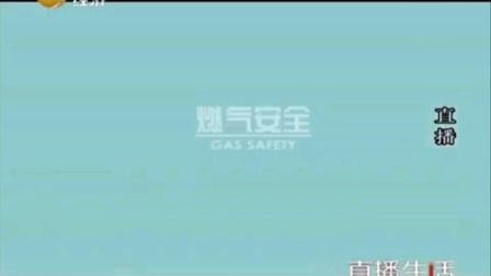 2016.03.30 辽宁广播电视台经济频道直播生活节目中场广告