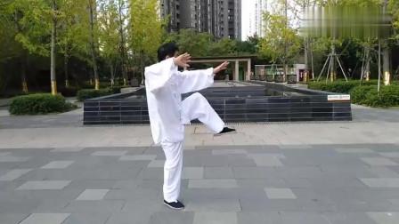 武术老拳师公园晨练四十二式杨式太极拳!