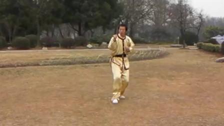 许敬光老师现场演练传统武术套路拳法教学!