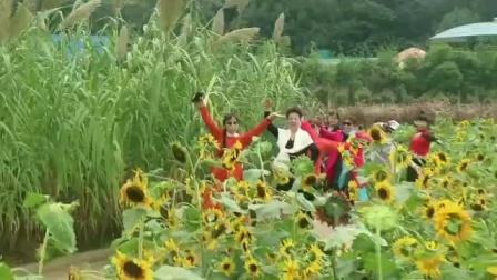 花儿朵朵向太阳