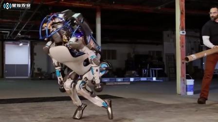 国外机器人的日常,以后会对人类造成威胁吗?