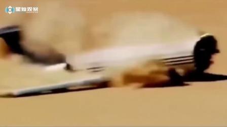 世界上最可怕的飞机坠毁事故,生命太脆弱了