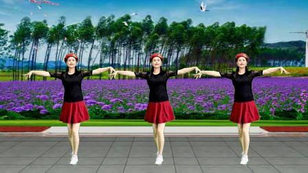 女女广场舞《心碎的蝴蝶》