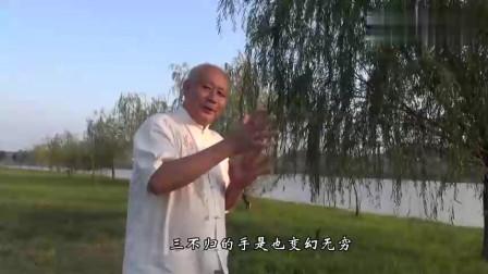 民间武术高手现场演练传统武术太极拳推手!