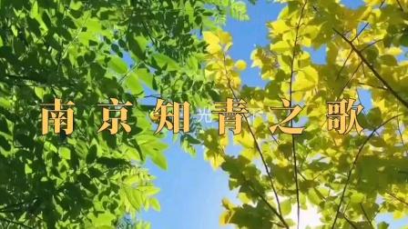 南京知青之歌