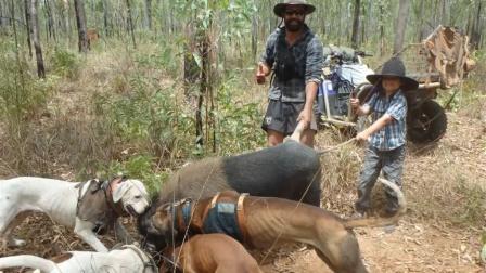 带着猎狗丛林狩猎野猪,经过三百回合的大战之后,野猪最终败下阵