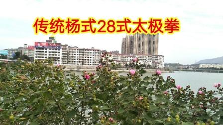传统杨式28式太极拳 视频拍于英山毕升广场 拳友多多指导