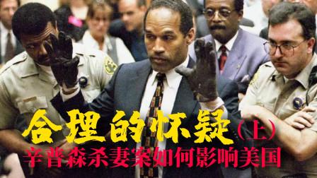 锦灰视读68《合理的怀疑》上:看懂辛普森杀妻案,杀人凶手为何无罪释放