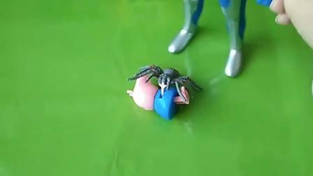 小蛛蛛抓了乔治,奥特曼见状上前救出了乔治