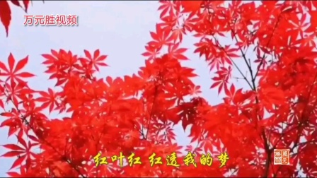 红叶舞秋山