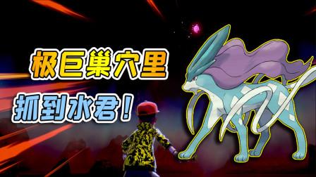 宝可梦剑盾103:极巨巢穴里面,发现传说宝可梦水君!