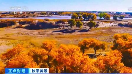 世界仅存三处 仿佛美丽童话世界 中国就有45万亩