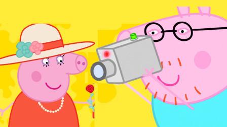 小猪佩奇最新第八季 猪爸爸给美丽的猪妈妈拍照 简笔画