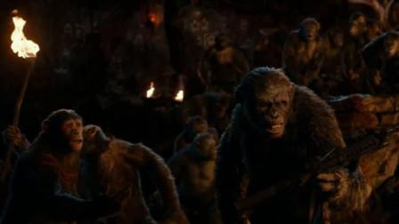 科巴真不要脸,暗中偷袭凯撒烧了猩猩的家,竟全嫁祸给人类
