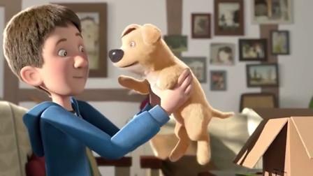 男孩收到一只残疾小狗,感到十分嫌弃,最后却因为它而改变了自己