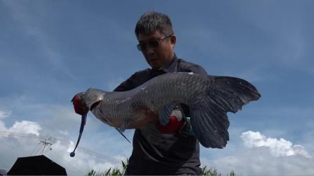 《游钓中国6》第22集 钓鱼要到船上钓,大鱼上钩跑不了