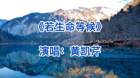 黄凯芹——《若生命等候》