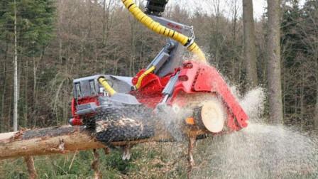 德国的伐木机有多厉害?看完这个过程真是不佩服都不行