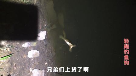 路亚用VIB搜底,竟意外钓获野生大甲鱼一只,当场被人出高价买走