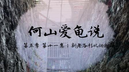 【何山爱龟说】第五季 第11集:新老洛杉矶动物园