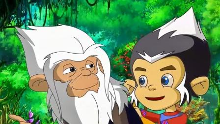 森林使者:小猴子真是可爱,还能一起玩,爷爷都好喜欢他