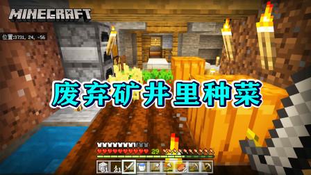 我的世界1.16版联机04:在废弃矿井里种菜,一看就是老队长了!
