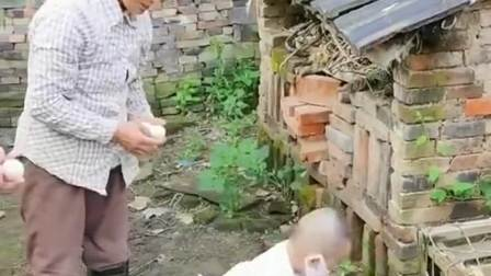 把儿子送回乡下奶奶家九天,舅妈就发来一段视频,笑死老子了